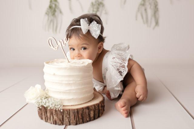 smash the cake 1 an